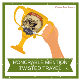 Twisted Travel Honorable Mention 2018